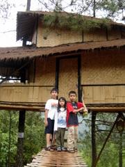 Di Rumah Pohon
