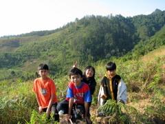 Di puncak bukit