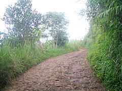 Jalan menuju TNGH
